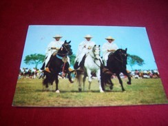 THEME ° CHEVAUX  / CHEVAL° LIMA 156m PERU LOS FAMOSOS CABALLOS DE PASO LIMA 512 Ft PERU THE FAMOUS AMBLING HORSES 1988 - Cavalli