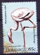 D8b- Dominica 1995 MNH, American Flamingo,Water Birds - Flamingo