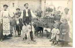 Métiers : Marchand Ambulant Avec ânes Et Chiens * Belle CPA - Artisanat