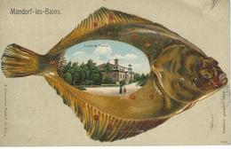 MONDORF-LES-BAINS : La Grande Piscine - Poisson - TRES RARE CPA - Mondorf-les-Bains