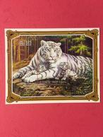 Korea 2005 M/S Wild Animals Panthera Tigers Nature White Baby Tiger Big Cats Fauna Mammals Animal Stamps CTO Mi BL625 - Environment & Climate Protection