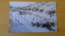 AV407.2 NAGYSAJÓ (Maros,Romania) WWII 1942 -Railway Construction -Hungary Trasportation Museum Archiv Photo Ca 1960-70 - Treni