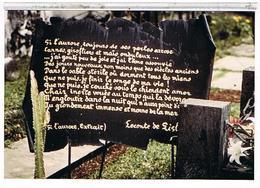 PHOTO 140 X 94  SAINT  PAUL  TOMBE  DE LE CONTE  DE L ' ISLE   TBE 1N970 - Saint Paul