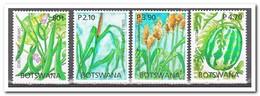 Botswana 2005, Postfris MNH, Plants, Fruit - Botswana (1966-...)