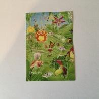 FRANCE 2005  Nature Orchides  Superbe-MUH Yv81 - Blocs Souvenir