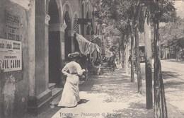 TRIESTE-PASSEGGIO DI BARCOLA-BELLA ANIMAZIONE-CARTOLINA ANNO 1900-1904 - Trieste