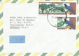 Brasil Brazil 1999 Nova Esperanca Azure Jay Cyanocorax Caeruleus Araucaria Cover - Brazilië