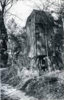 DEURLE - Sint-Martens-Latem (O.Vl.) - Molen/moulin - Molen Cyriel Buysse, 'n Vergeten En Overwoekerd Molenrestant (1989) - Sint-Martens-Latem