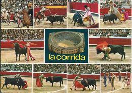 CORRIDA - Corrida