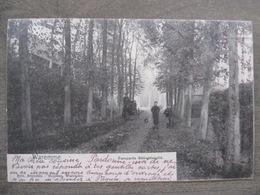 Cpa Waremme - Remparts Sébastopold - Nels Moureau Waremme - Calèche - 1904 - Borgworm