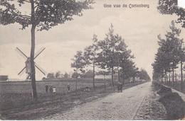 Une Vue De Cortenberg - Kortenberg