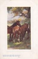 AR42 Animals - Horses Under A Tree - Tuck Oilette - Horses