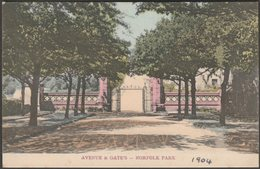 Avenue & Gates, Norfolk Park, Sheffield, Yorkshire, C.1905  - RPS Series Postcard - Sheffield
