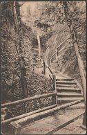 Shanklin Chine, Shanklin, Isle Of Wight, C.1910  - Briddon's Library Postcard - Birmingham Scouting Interest - England