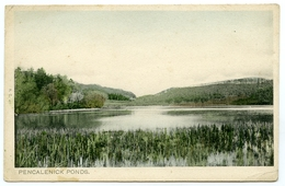 TRURO : PENCALENICK PONDS - Other