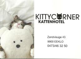 Kittycorner Kattenhotel Eeklo / Chat Kat Cat - Non Classés