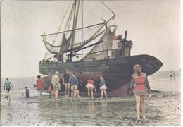 Büsum  Krappenfischerboot-  (90160-089) - Büsum