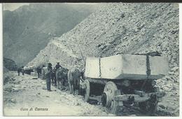 Cave Di CARRARA: Il Trasporto Del Marmo Con Carro Trainato Da Buoi - Carrara