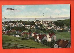 GCA-31  Heiden Mit Dem Bodensee.  GElaufen In 1910. - AR Appenzell Rhodes-Extérieures