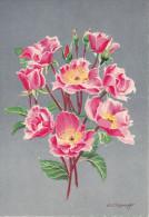 CP - G.DIAKOFF - Barré Et Dayez - Barday - Illustrateurs - Fleur - Rose - Dainty Maid - 1459H - Illustrateurs & Photographes