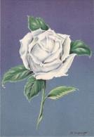 CP - G.DIAKOFF - Barré Et Dayez - Barday - Illustrateurs - Fleur - Rose - Elisabeth Arden - 1459K - Illustrateurs & Photographes