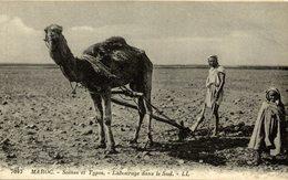Scènes Et Types Du MAROC LABOURAGE DANS LE SUD - Marruecos