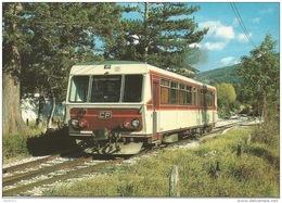 CPSM - Moriez (Alpes-de-Haute-Provence) - L'autorail SY05 Traversant La Gare - FRANCO DE PORT - Otros Municipios