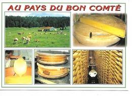 AU PAYS Du BON COMTE / CPM Cellard Multivues - 5 - Vierge / Impeccable +++++ - Recettes (cuisine)