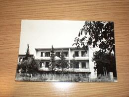 Croatia, Savudrija, 1964, Pansion - Croazia