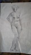 """Arte, Art - Disegno A Matita, Schizzo - Pencil Sketch - Female Nude, Nudo Femminile - """"3-10-49 Casali"""" - 19x30cm - Other Collections"""