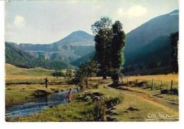 31-190/ FRANCE -    MONTS  Du   (Cantal) - Sonstige Gemeinden