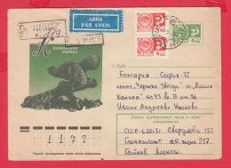 231626 / 22.02.1977 - 4 Kop. -  Kasli Iron Sculpture BIRD ,  Stationery Russia - 1970-79