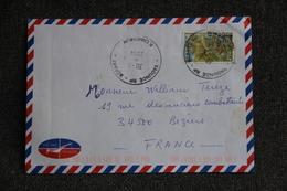 Lettre Du CAMEROUN ( YAOUNDE) Vers FRANCE - Camerun (1960-...)
