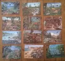 Lot De 22 Cartes Postales Illustrateur François CROZAT / FRAPNA - Illustrateurs & Photographes