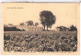 CPA  33 SAINT SERIN DE  CADOURNE DOMAINE ANDRON PROPRIO  M. THOP   CP938 - France