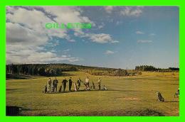 SPORT DE GOLF - GOLF COURSE, FIRST TEE IN ANTIGONISH, NOVA SCOTIA - WORLD WIDE SALES AGENCIES LTD - - Golf