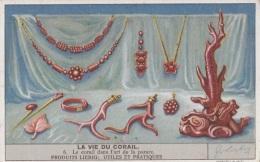 Chromos - La Vie Du Corail - Bijoux - Corail Rouge - Chefs Afrique - Liebig