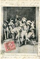 Sortie Du Chenil Grands Vendéens Et Nivernais 1903 (cachet Rond SAINT GERMAIN PUY DE DOME Au Dos) - Chiens