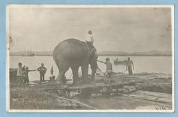A044  CPSM  Post Card   BIRMANIE  -  Eléphant Transporté Sur Un Radeau   +++++++ - Cartes Postales