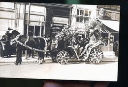 PARIS ATTELAGE DEVANT LE MAGASIN HOLLAND AMERICA LINE ET A LA CHEYRETTE BOUTIQUE DE GANTS - Petits Métiers à Paris