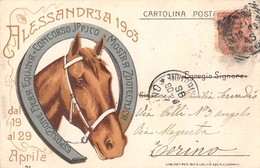"""0003 """"ALESSANDRIA 1903 - FIERA DI SAN GIORGIO"""" CART. ILL. ORIG. SPED. '903 - Expositions"""