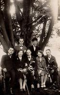 Carte Photo Originale Bande De Jeunes Au Pied D'un Arbre Vers 1920/30 - Fleur à La Boutonnière & Noeuds Papillon - Personnes Anonymes