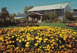 Canada Calgary Marigolds and Tropical Aviary At Calgary Zoo