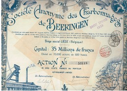 Action Ancienne - Sté Des Charbonnages De Beeringen - Titre De 1919 - Mines