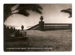 CT--02504-- S.BENEDETTO DEL TRONTO-UN PARTICOLARE DEL LUNGOMARE-VIAGGIATA 1953 - Italia