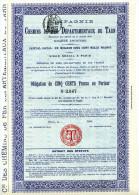 CHEMINS De FER DEPARTEMENTAUX Du TARN (blanco) - Chemin De Fer & Tramway