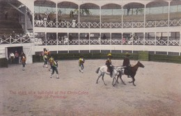 THE START OF A BULL FIGHT AT THE CIRCO COLON. REP OF PANAMA. I L MADRO JR.-BLEUP - Panama