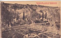 JERUSALEM. JARDIN DE GETHSEMANIE. EBC. VOYAGEE-BLEUP - Israël
