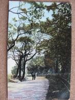 Dark Lane, Lathom, Lancashire - Posted 1908 - Altri