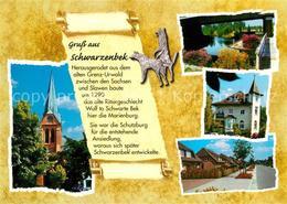 73223302 Schwarzenbek Franziskanerkirche Buergerpark Altes Rathaus Muehlenkamp S - Germany